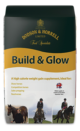 D&H Build&Glow 20kg