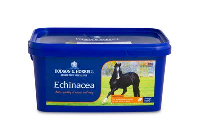 D&H Echinacea 600g