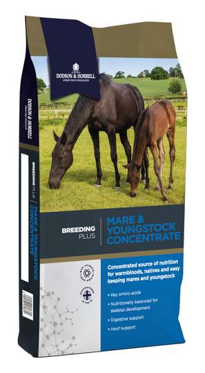 D&H Mare & Youngstock Concentrate 20kg