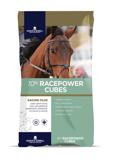 D&H Racepower Cubes 10 % 25 kg