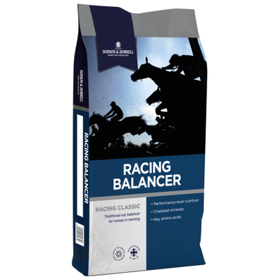D&H Racing Balancer 20 Kg