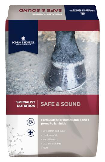 D&H Safe&Sound 18kg