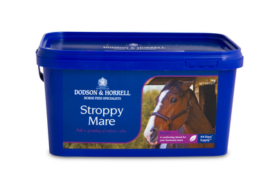 D&H Stroppy Mare