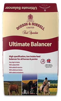 D&H Ultimate Balancer 20kg