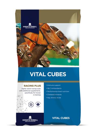 D&H Vital Cubes 25 Kg